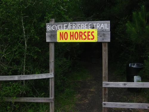 No horses? In Texas? Really?